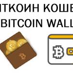 Как создать биткоин-кошелек на официальном сайте и начать им пользоваться